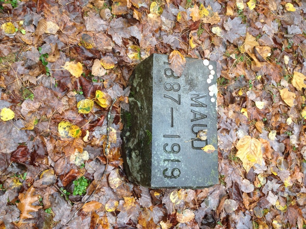 Wallace Horse Cemetary: 373 Mount Eustis Rd, Littleton, NH