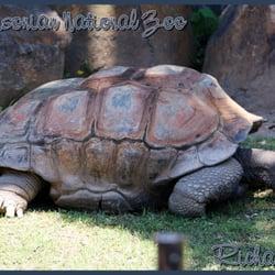 Smithsonian National Zoological Park logo