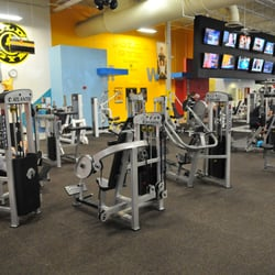 New Golds Gym Bench Bar