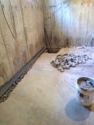 basement restoration technologies waterproofing cincinnati oh rh yelp com Business Dog Business Dog