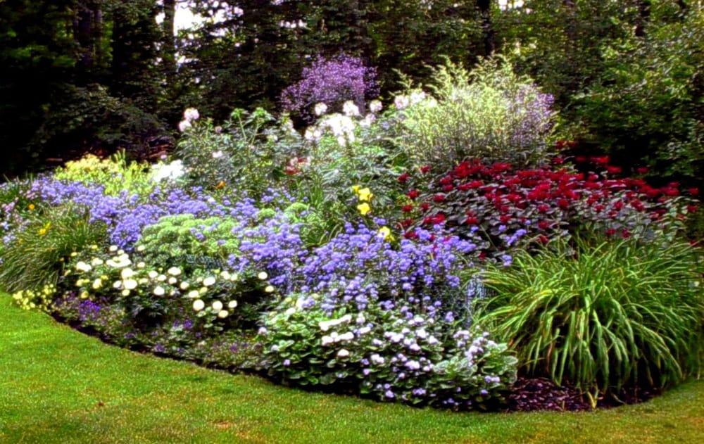 S e landscaping 18 photos landscaping 920 e for Garden trees b q