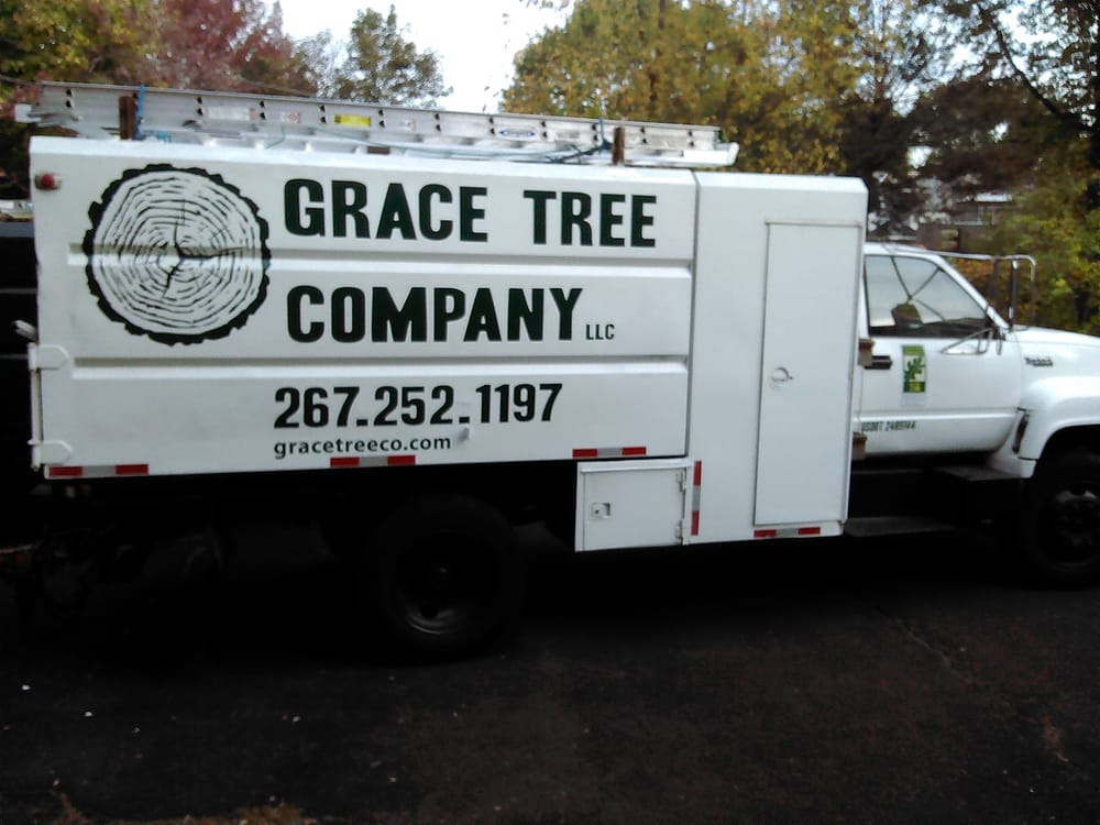 Grace Tree Company Get Quote Tree Services