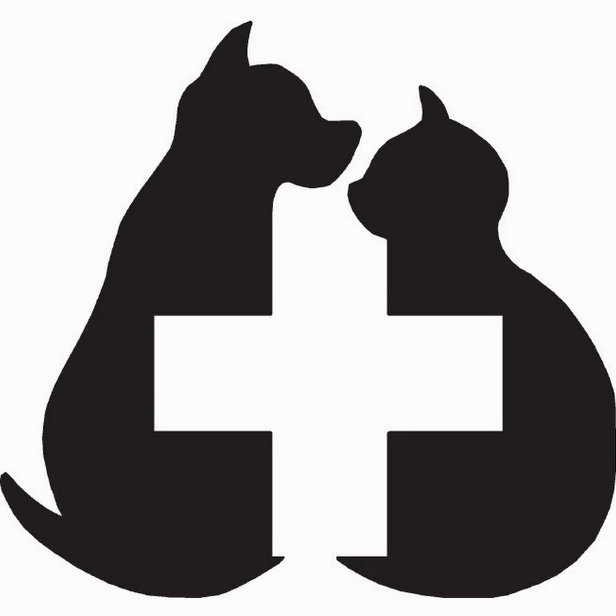 Proctorville Animal Clinic: 16 State St, Proctorville, OH