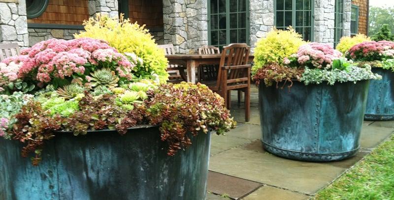 Photo Of Parterre Garden Services   Cambridge, MA, United States
