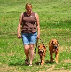 Canine Life Skills: 6257 Klondike Rd, Hillsboro, MO
