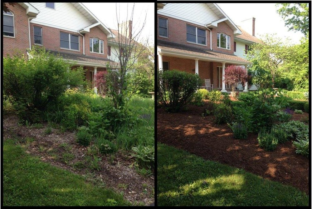 Before And After Landscaping Yelp