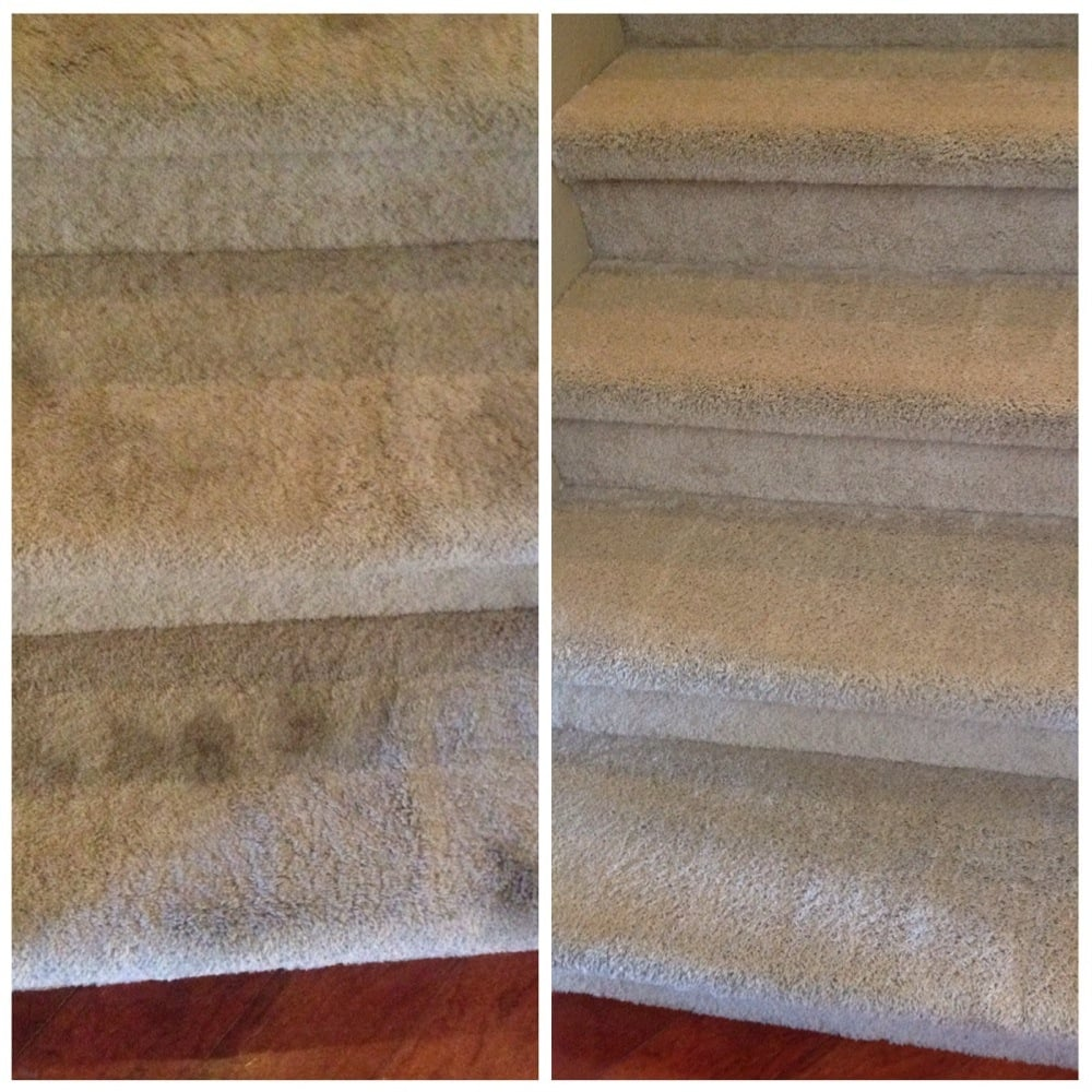Image Result For Carpet Cleaning Elk Grove Ca