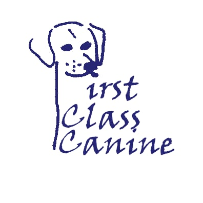 First Class Canine: Carroll St, Pittston, PA