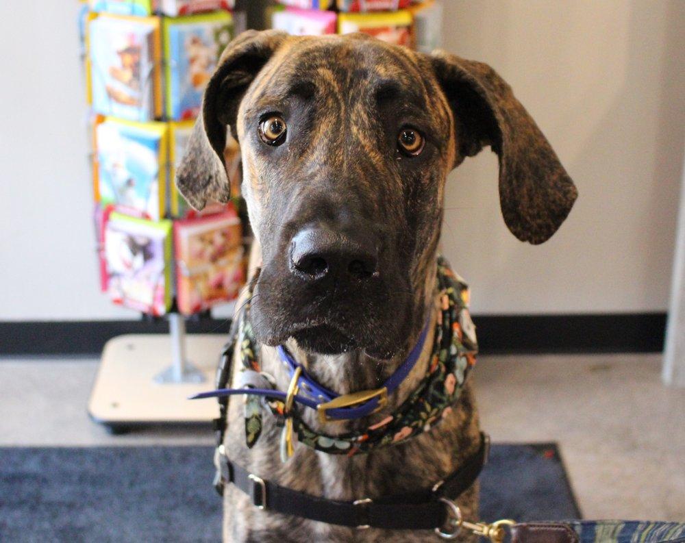 Chuck & Don's Pet Food & Supplies: 4723 County Rd 101, Minnetonka, MN
