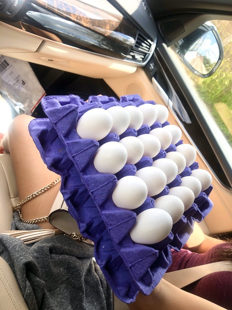 Hilliker's Fresh Eggs: 11329 El Nopal, Lakeside, CA