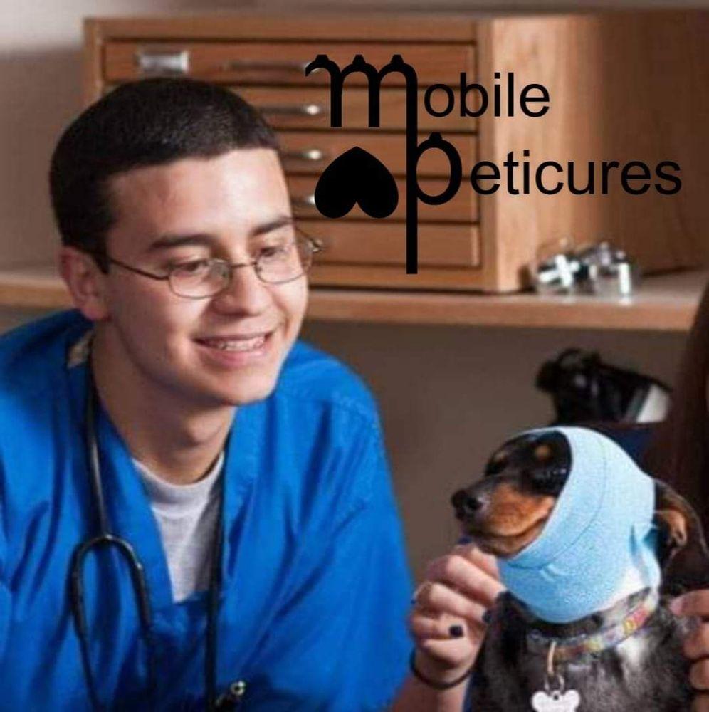 "Mobile ""Peticures"" by Eddie Avila: 45789 W Rainbow Dr, Maricopa, AZ"