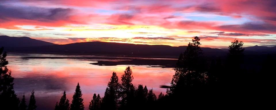 Cat Daddy Hauling Services: Lake Almanor, CA