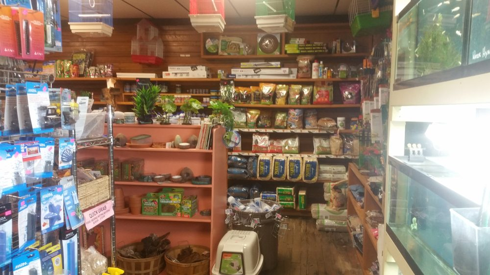 Animal Crackers: 44 Deerfield St, Greenfield, MA