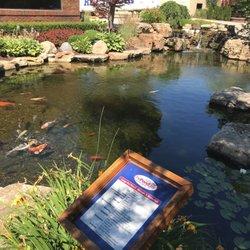 Photo Of The Pond Guy Armada Mi United States