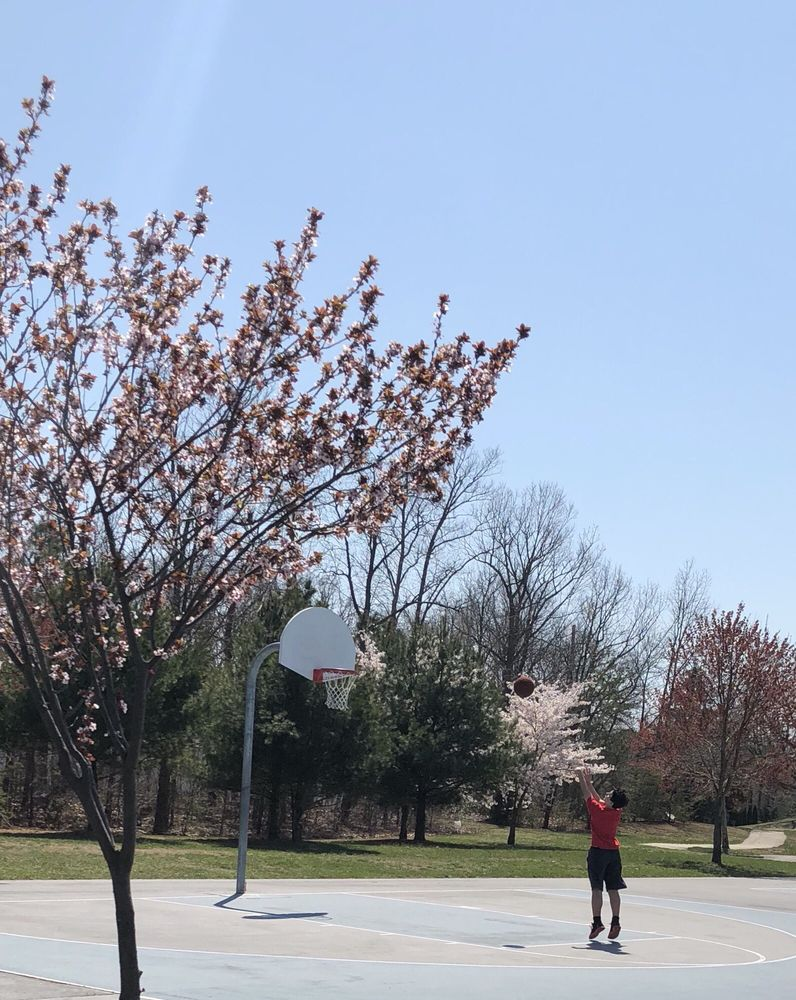 Gloucester township park and recreation