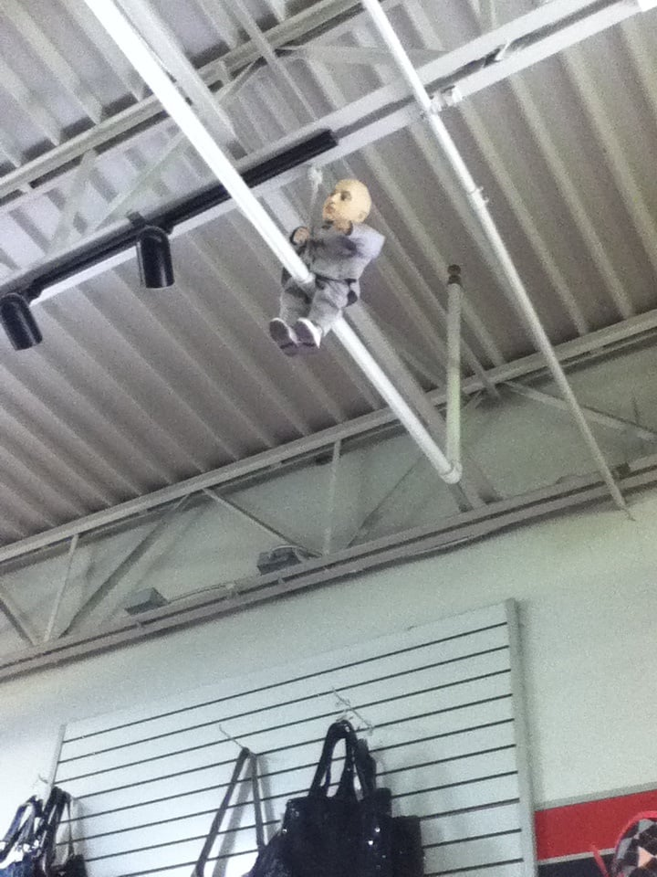 Mini-Me watches from above - Yelp