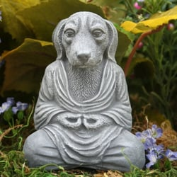 Karma Dog Training San Antonio