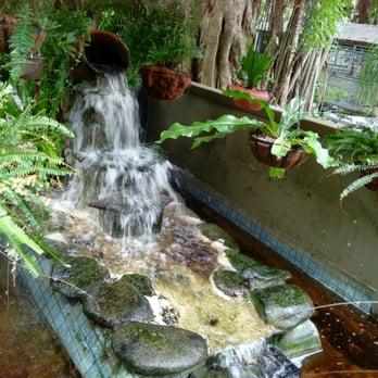 Photo Of Everglades Wonder Gardens Bonita Springs Fl United States Small Waterfall