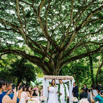 Wedding Planner 808 26 Photos 36 Reviews Wedding Planning