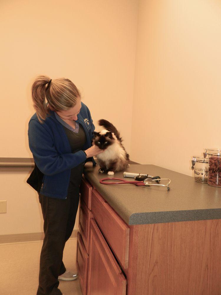 Loudon County Animal Hospital: 460 Medical Park Dr, Lenoir City, TN