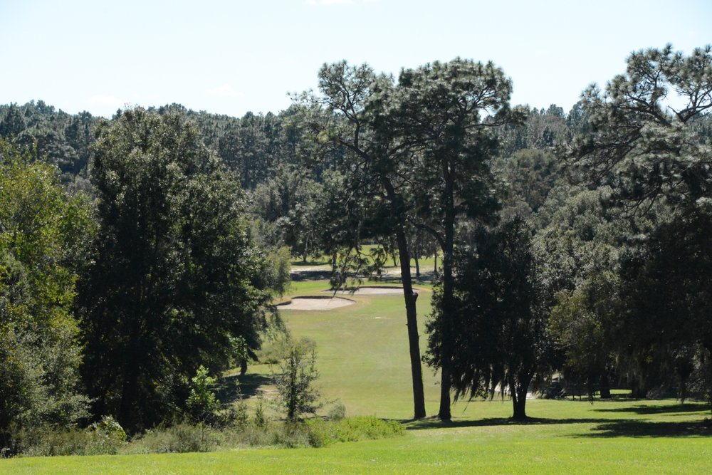 Citrus Springs Golf and Country Club: 8690 N Golfview Dr, Citrus Springs, FL