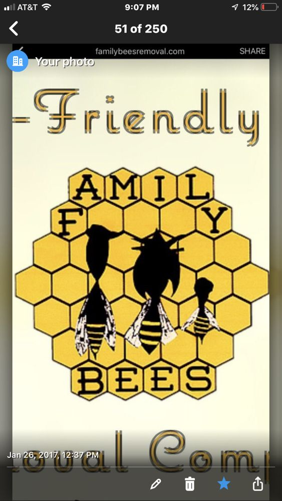 Family Bees Eco-friendly Bee Removal