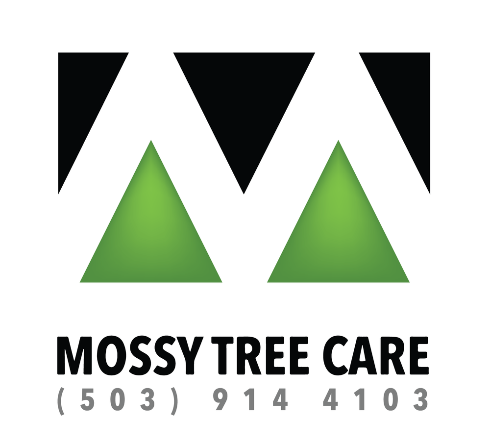 Mossy Tree Care