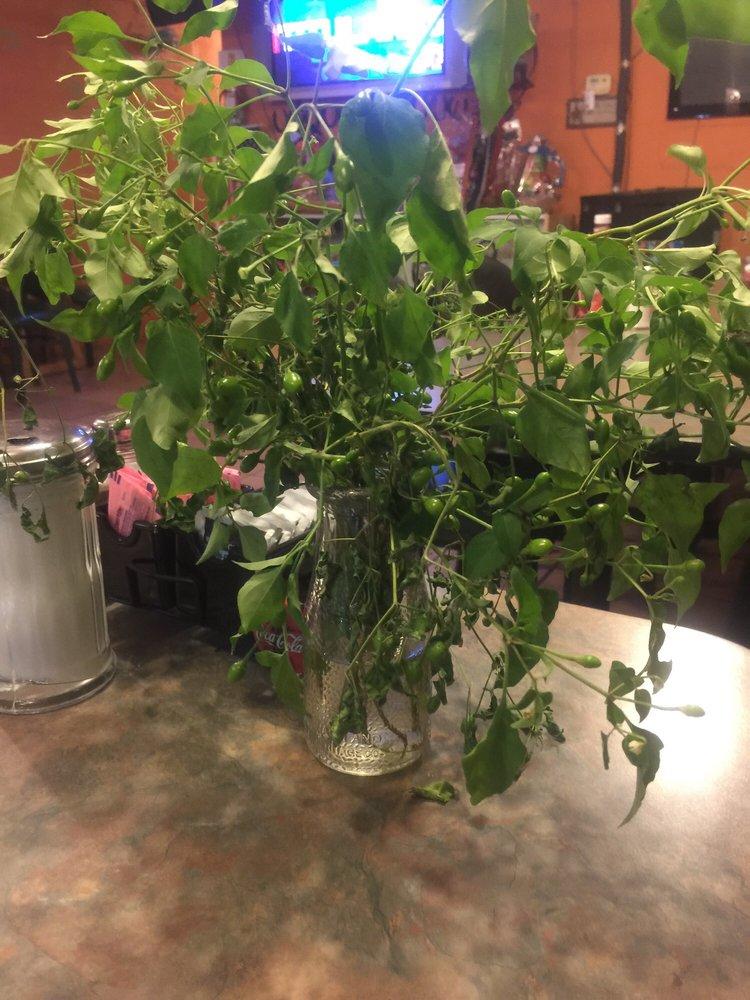 Rancho Cafe: 817 Grant St, Roma, TX