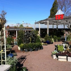 Photo Of Habersham Gardens Nursery Atlanta Ga United States