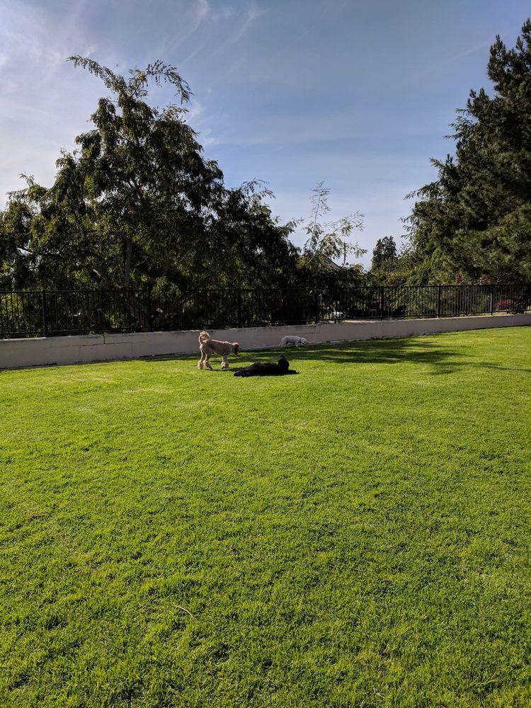 Springville Park: 801 Via Zamora, Camarillo, CA