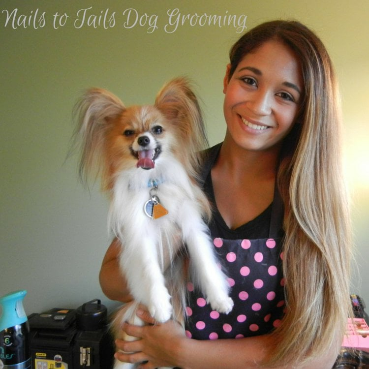 Nails To Tails Dog Grooming: 114 Rand Rd, Lakemoor, IL