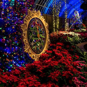 Phipps Conservatory Christmas 2019.Phipps Conservatory And Botanical Gardens 1830 Photos