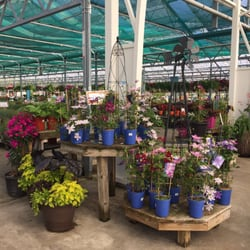 Perfect Photo Of Petitti Garden Centers   Avon, OH, United States.