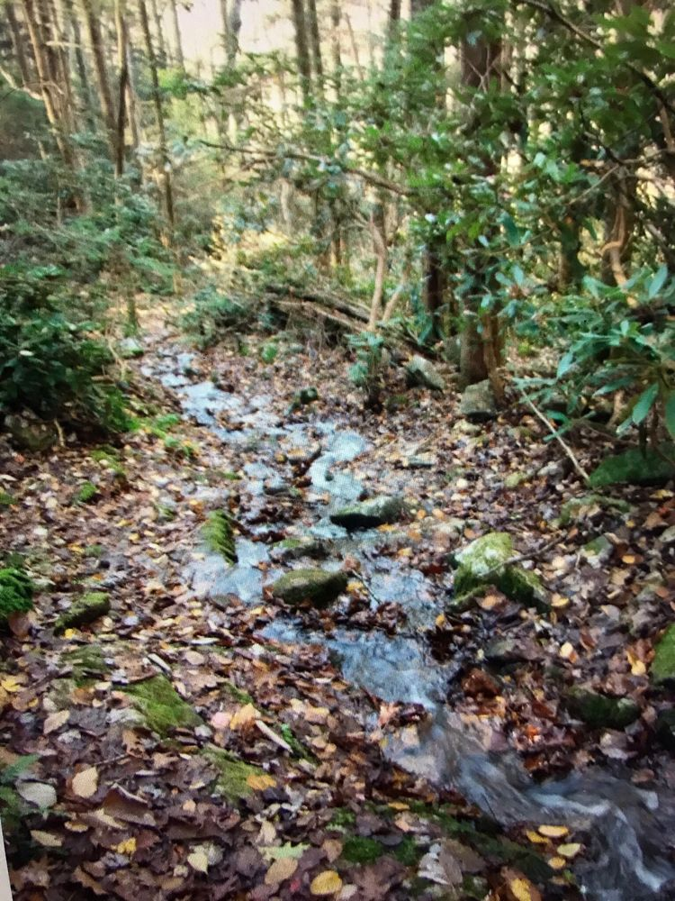 Breaks Interstate Park Campground: 627 Commission Circle, Breaks, VA