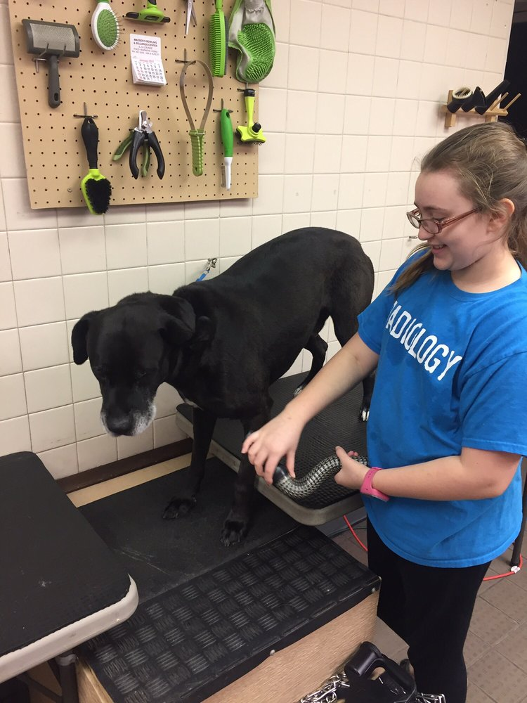 The Canine Scrub: 4130 S 48th St, Lincoln, NE