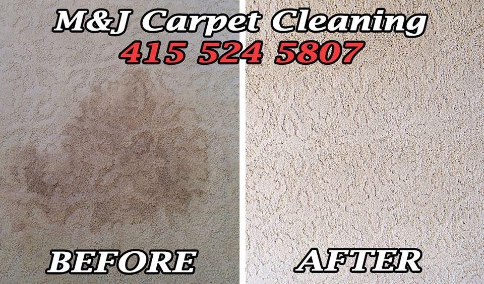 Commercial Grade Carpet Cleaner