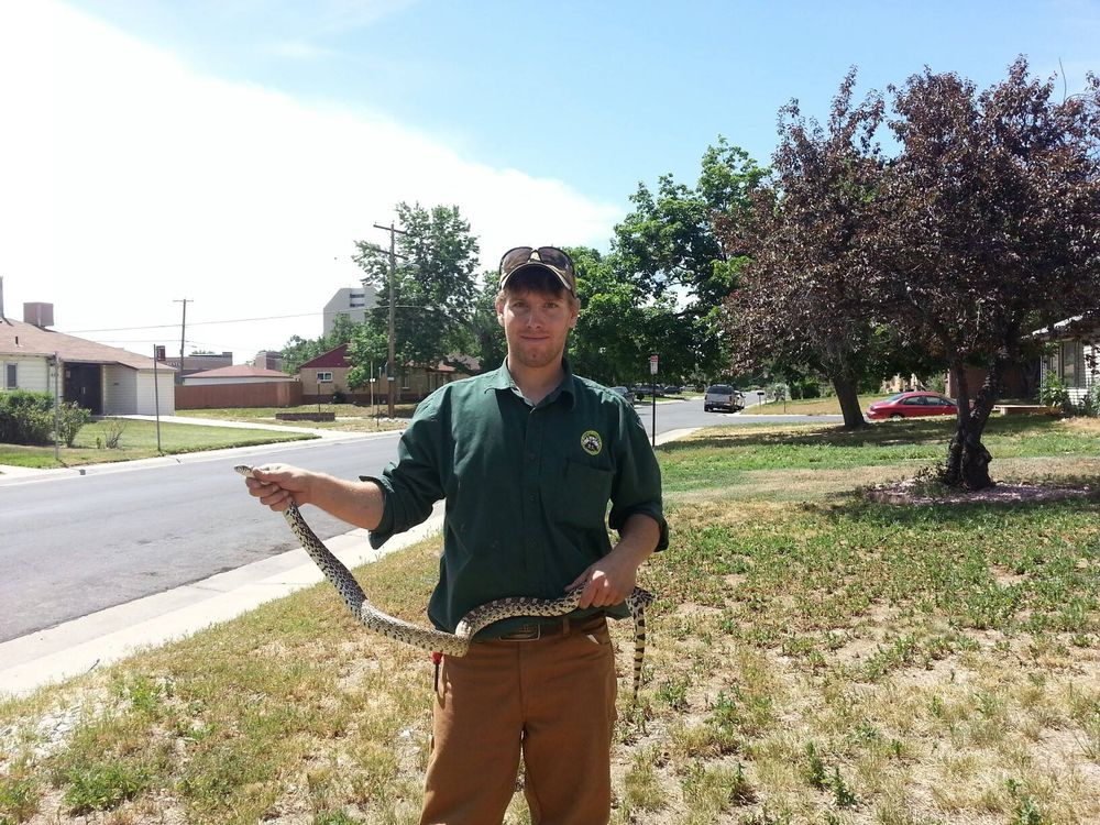 Photo of Animal Control Specialist: Denver, CO