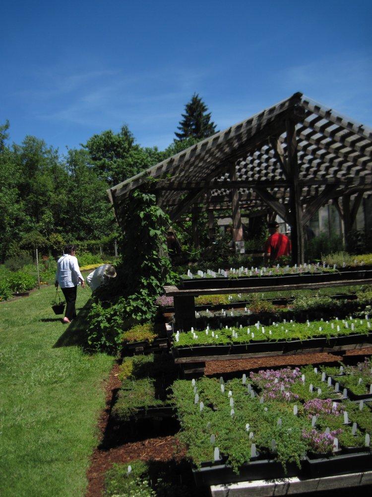 The Thyme Garden: 20546 Alsea Hwy, Alsea, OR