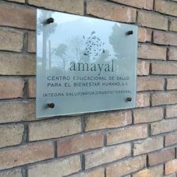 Amayal yoga 5 de mayo 1209 casco urbano nuevo le n for Jardin urbano shop telefono