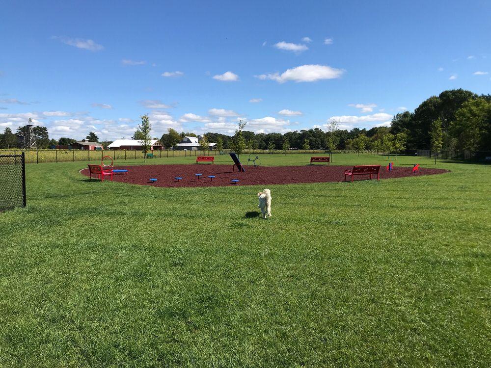Auggie Land Dog Park: Chetek, WI