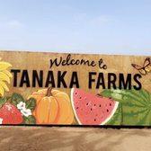 fb409c4d0 Tanaka Farms - 3246 Photos & 787 Reviews - Greengrocers - 5380 3/4 ...