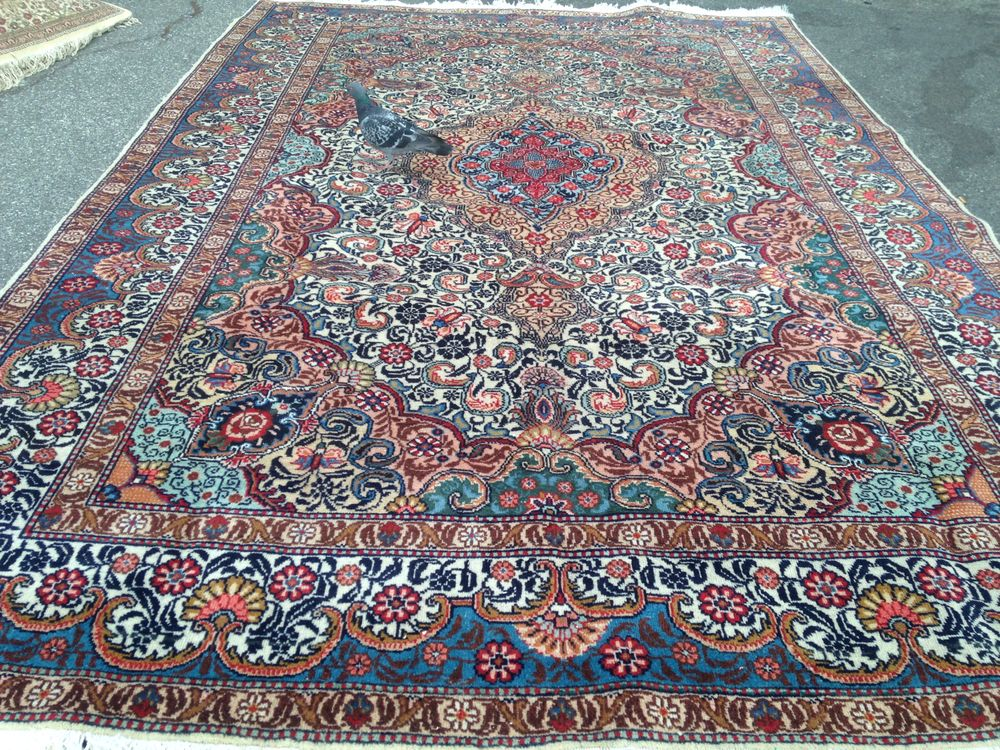 Bay area rugs outlet is the best rug store in san for Best store to buy rugs