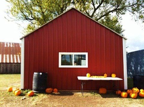 Amaizing-Acres: 34079 Impala Trl, Barnard, MO