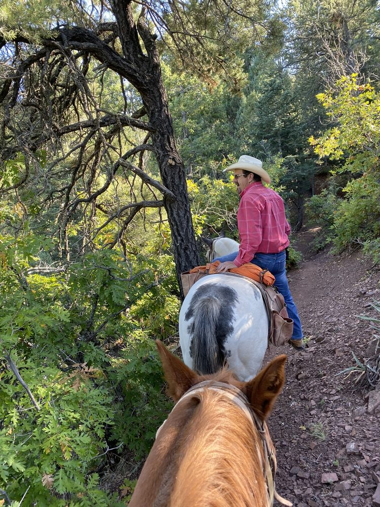 Cedar Crest Country Cottage and Stables: 39 Snowline Rd, Cedar Crest, NM