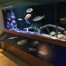 Photo Of South Florida Science Center And Aquarium West Palm Beach Fl United