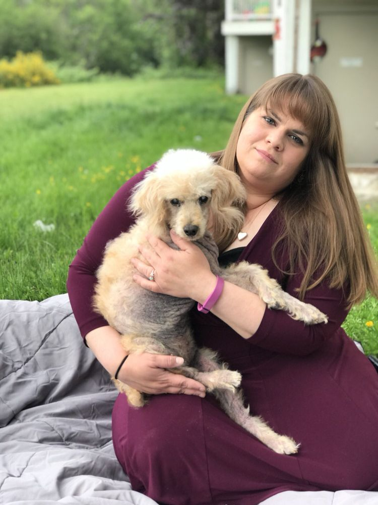 Loving Care Pet Clinic: 21114 Meridian Ave E, Graham, WA
