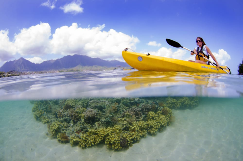 Oahu Kayak Tours | Holokai Kayak & Snorkel Adventure
