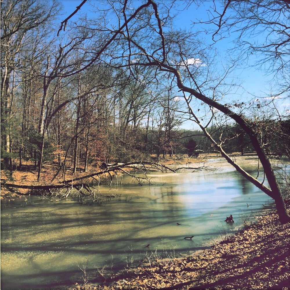 Clark State Forest: Henryville, IN