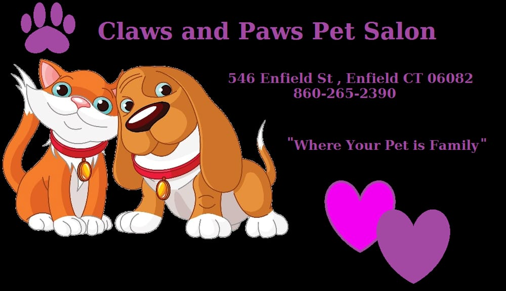Claws and paws pet salon 10 photos toilettage 546 for A salon enfield ct