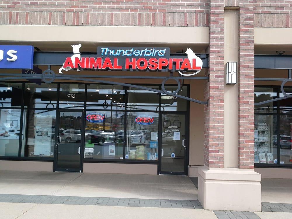 Thunderbird Animal Hospital - Veterinarians - C103-20159 ... - photo#1